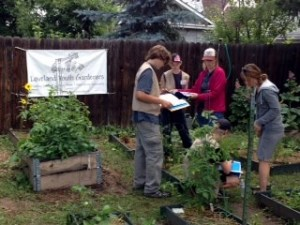 Loveland Youth Gardeners 2